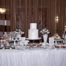 winter wonderland bridal shower dessert table